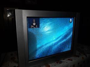 vendo TV 29' pulgadas