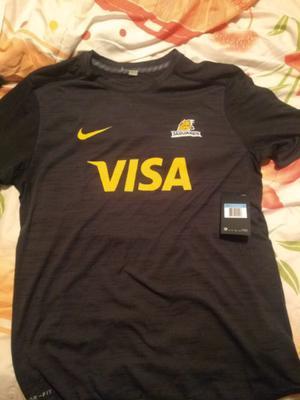Camiseta remera entrenamiento nike rugby jaguares