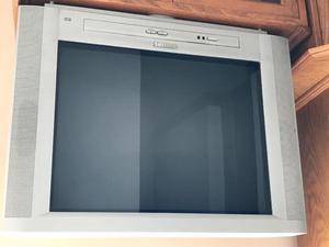 """Vendo TV Philips 21"""""""