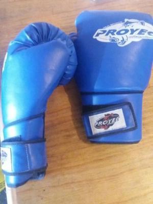 Guantes de boxeo semi nuevos