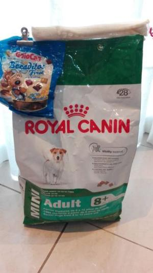 ROYAL CANIN Mini ADULT +8 X 3 KG. + Regalo Doble!