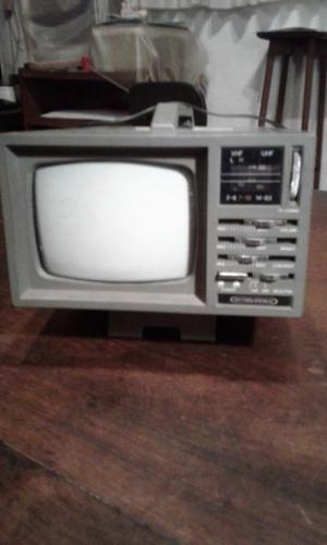 TV 5 pulgadas con radio am y fm.
