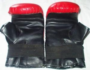 Bolsa de Boxeo ($) y Guantes de Boxeo (500$) Las dos