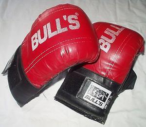 Guantes de Boxeo 500$ Excelente Estado