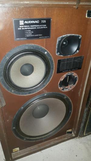 Parlante Audinac con Amplificador
