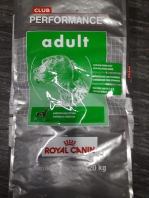 ROYAL CANIN PERFORMANCE ADULTO X 20KG+GOLOSINAS
