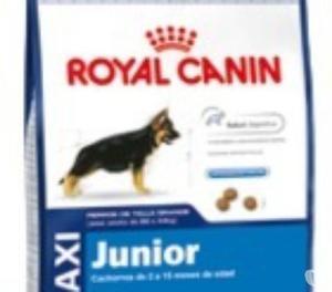ROYAL CANIN MAXI ADULTO X 15KG ENVIOS SIN CARGO