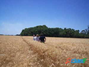 Campo Agrícola/Turístico, 74 hectáreas, a 80 metros del