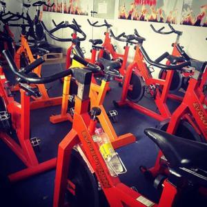 vendo lote de 12 bicicletas de indoor cycle