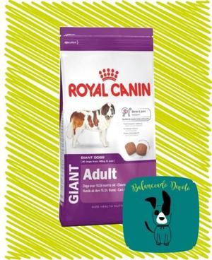 Royal Canin Giant Adulto X 15kg - Zona Devoto - Envios