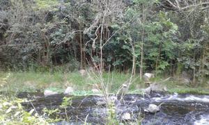 San Luis,Nogolí 1, 2 y 3 hectáreas, Servicios, rbo menor