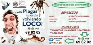 FUMIGACIONES/DESRATIZACIONES/CTROL DE INSECTOS