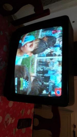 Televisor 21 pulgadas con control remoto