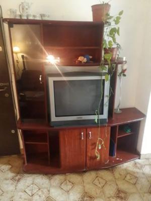 Vendo tv 29 pulgadas con control remoto.