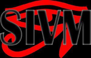 SIVM Especialistas en Seguridad
