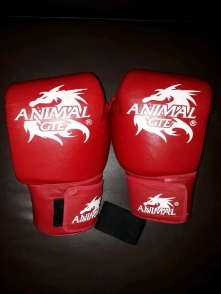 Guantes de boxeo Animal GTE (TALLE 12) + vendas