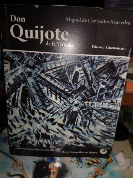 Don Quijote De La Mancha - Cervantes - Guanajuato