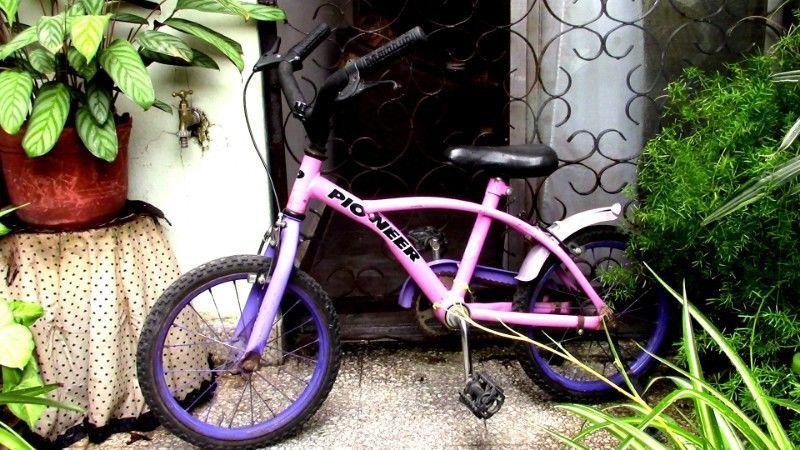 Bicicleta usada para nena lista para usar. Marca Pioneer.