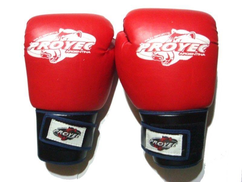Guantes De Boxeo Entrenamiento Proyect Talle 12 Como Nuevos