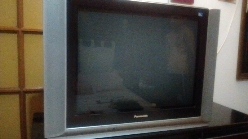 VENDO TV 29 PULGADAS PANASONIC