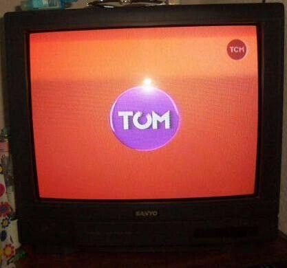 TV COLOR SANYO CONTROL REMOTO FUNCIONA PERFECTAMENTE