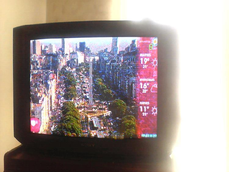 Televisor Tv Sony Trinitron 29' Pantalla Plana LIQUIDO!!