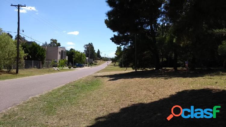 DOS EXCELENTES LOTES EN EL BARRIO LAS LOMAS SOBRE ASFALTO