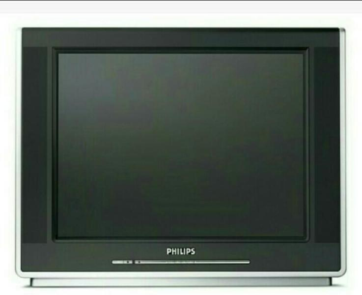 Tv Philips Real Flat 29p