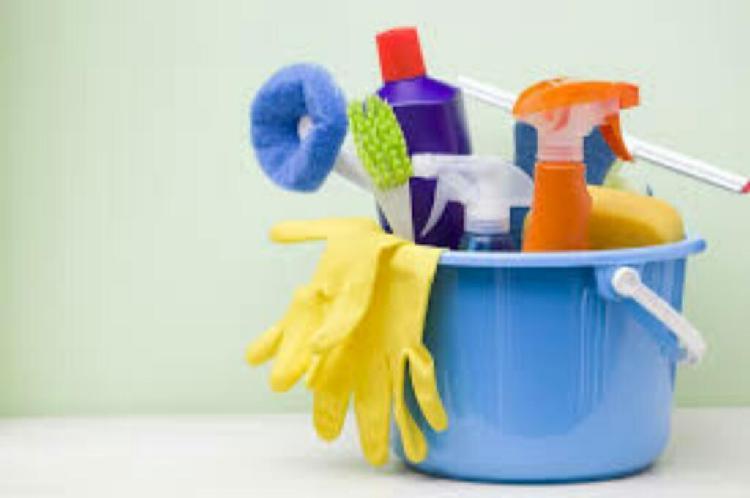 Servicio Domestico Limpieza