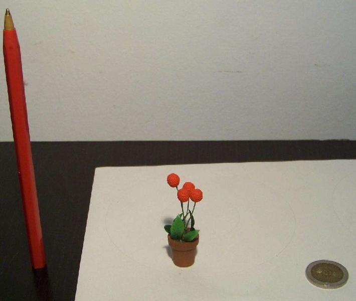 Casa De Muñecas Planta Miniatura Escala 1:12