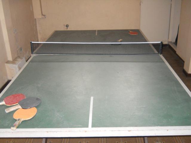Mesa de Ping Pong Profesional Plegable