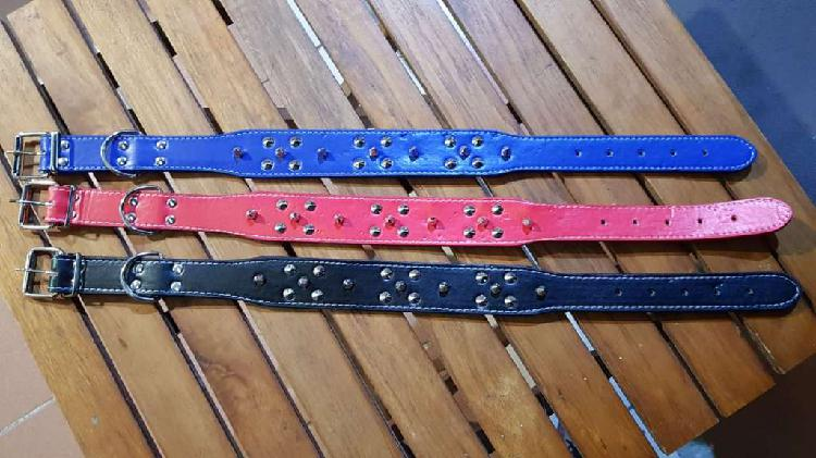 Collar Ecocuero Con Puas Y Tachas Pitbull 60cm