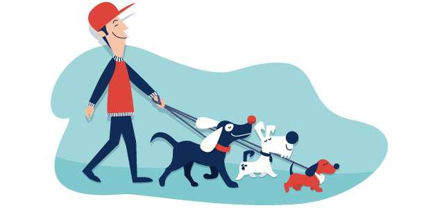 Paseador de perros.Rosario