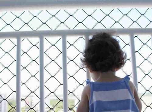 Instalacion De Red Para Balcon Ventana Terraza Escalera Gato