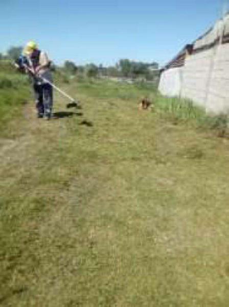 Se Hacen Trabajos de Limpieza Y Jardines