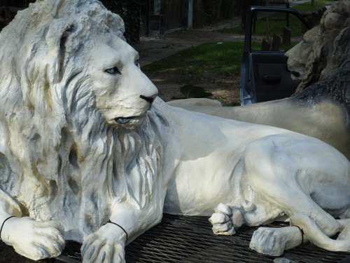 Estatua De Leon Fabricado En Resina Para Exterior