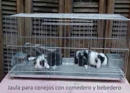 Jaula Para Conejos Con Comedero, Bebedero Y Band/sanitaria