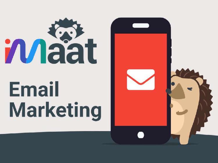 Email Marketing Profesional, Campañas de Email para