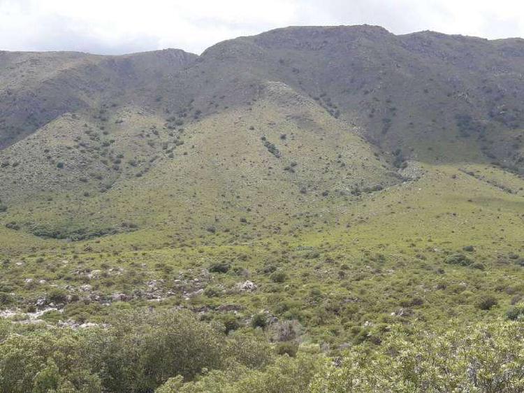 Venta Lote, Sierras de San Francisco del Monte de Oro, San