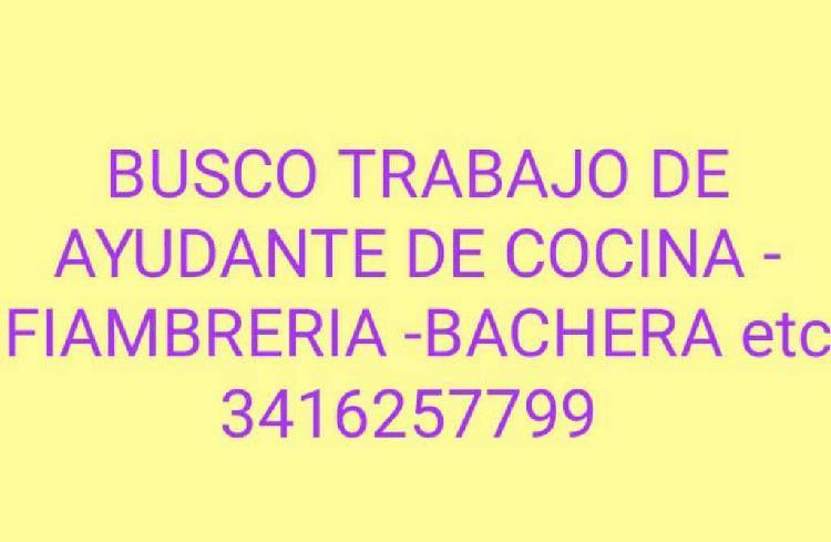 Busco Trabajo Ayudante De.cocina