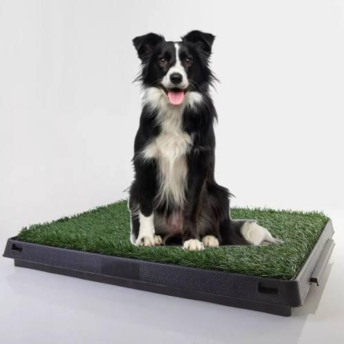 Bandeja Sanitaria Perro Cachorros Premium Pitbull 40% Off!!!