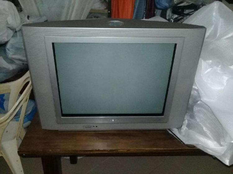 Tv Philips Pantalla Plana 21 Pulgadas