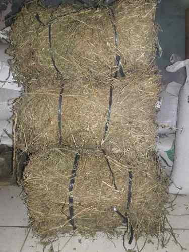 Heno De Alfalfa Alimento: Conejos. Cobayos X 4 Kg Zona Norte