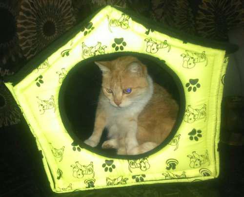 Casitas Camas Para Perros Y Gatos T3