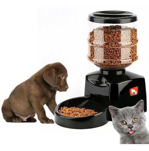 Comedero Dispenser Automático Digital,perros Y Gatos