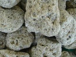 Piedra Pomez -acuarios -ciclidos Africanos -berazategui.