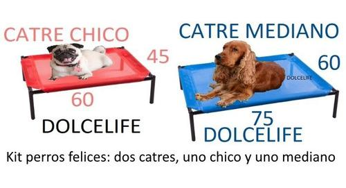 Kit Perros Felices 2 Catres: 1 Chico, 1 Mediano Envío