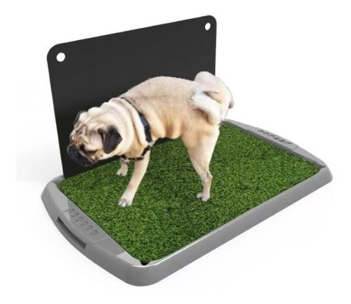 Bandeja Sanitaria Eco C/acc Perro Mascotas Cachorro 40%off