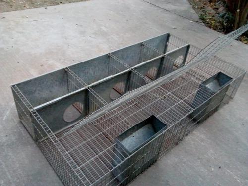 Jaula Para Conejos - 157cmx85cmx30cm En Cordoba