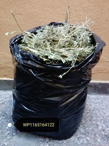 Heno De Alfalfa Para Conejos, Cobayos Y Chinchillas